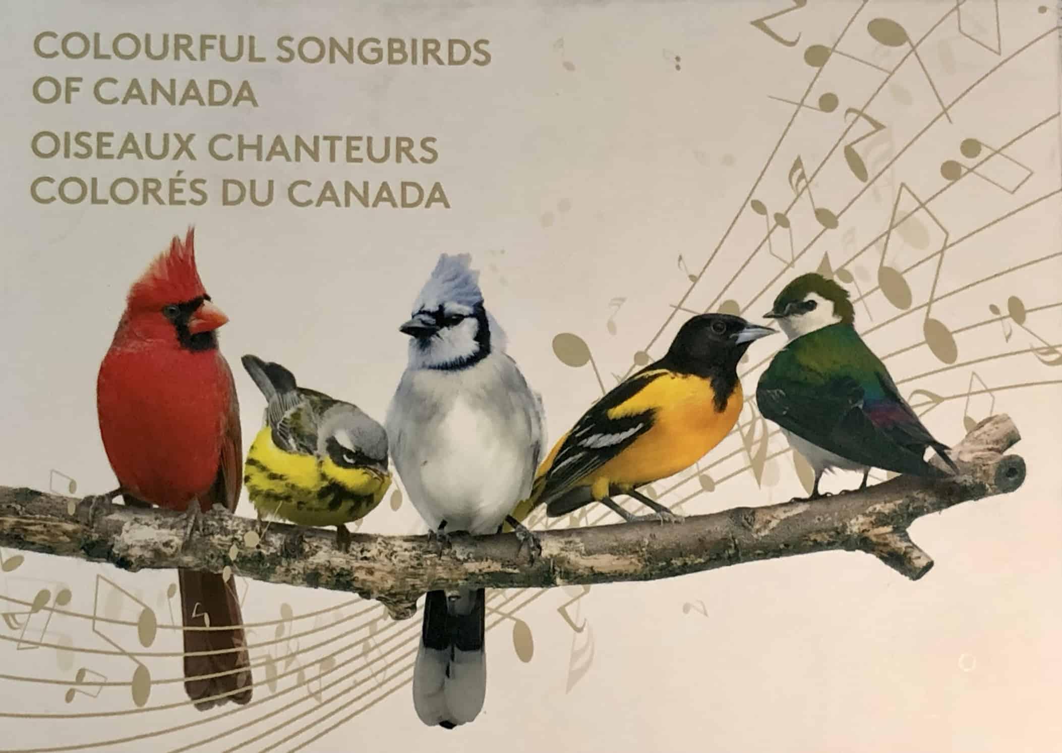 CANADA - Oiseaux chanteurs colorés du Canada 2015